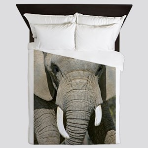 Elephant Face Queen Duvet
