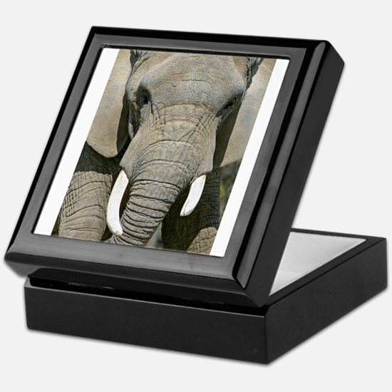 Elephant Face Keepsake Box