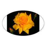 Yellow rose Sticker (Oval 50 pk)
