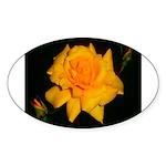 Yellow rose Sticker (Oval 10 pk)