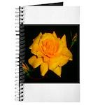 Yellow rose Journal