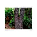 Tree Throw Blanket