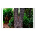 Tree Sticker (Rectangle 50 pk)