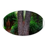 Tree Sticker (Oval 50 pk)