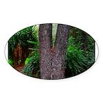 Tree Sticker (Oval)