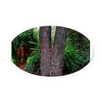 Tree Oval Car Magnet