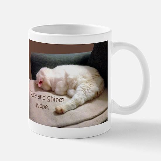 Rise And Shine? Nope. Mug