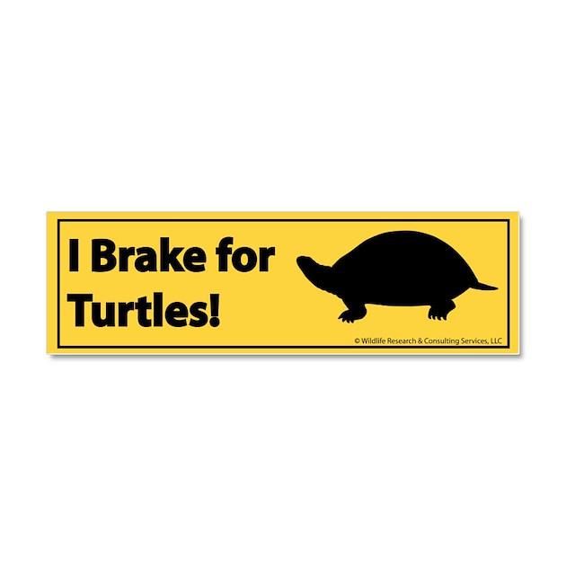 Design Your Own Bumper Sticker Online