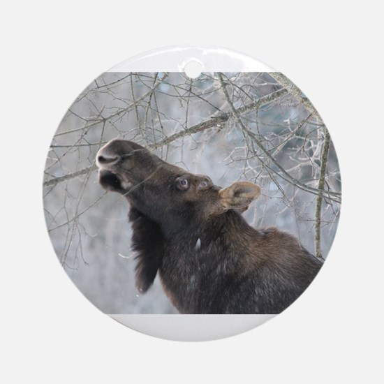 Moose up Ornament (Round)