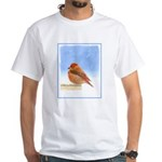 Scarlet Tanager White T-Shirt