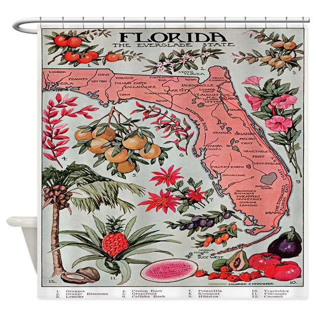 vintage florida fruit flower map shower curtain by 87973
