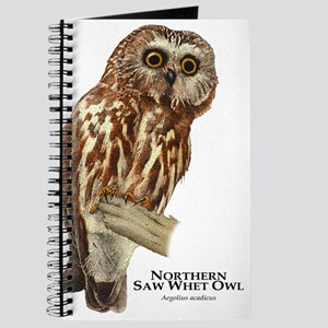 Northern Saw-Whet Owl Journal