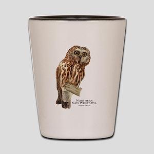 Northern Saw-Whet Owl Shot Glass