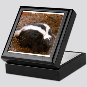 Friendly Little Skunk Keepsake Box
