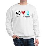 Peace, Love, Dysautonomia Awareness Sweatshirt