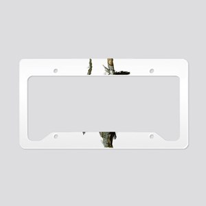 Ivory Billed Woodpeckers License Plate Holder