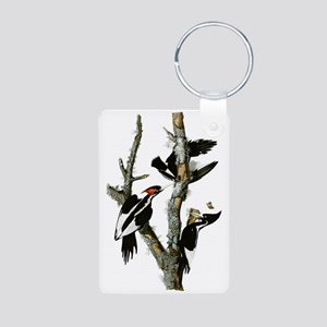 Ivory Billed Woodpeckers Aluminum Photo Keychain