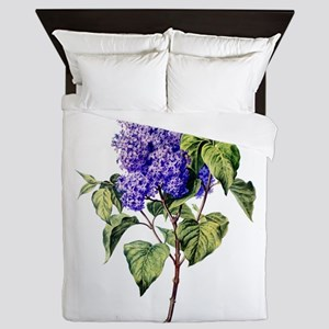 Lilac Drawn From Nature Queen Duvet