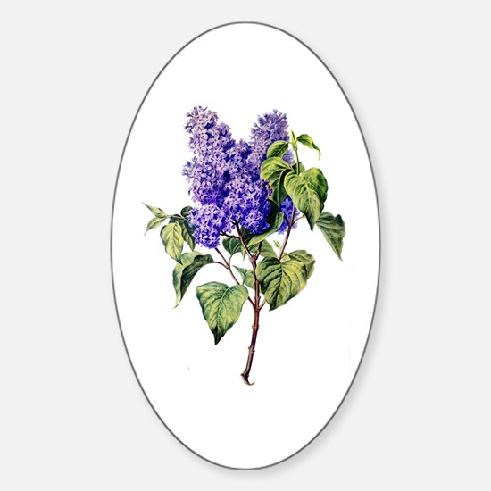Lilac Drawn From Nature Sticker (Oval)