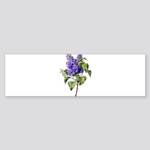 Lilac Drawn From Nature Sticker (Bumper)