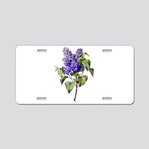 Lilac Drawn From Nature Aluminum License Plate