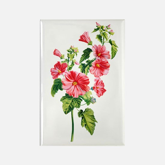 Tree Mallow Drawn From Nature Rectangle Magnet