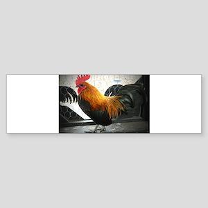 Bantam Rooster Sticker (Bumper)