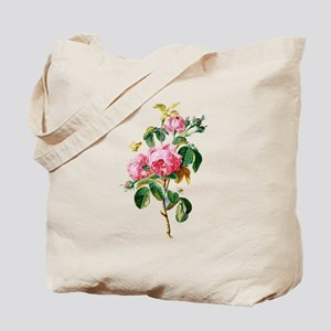 Cabbage Rose Drawn From Nature Tote Bag