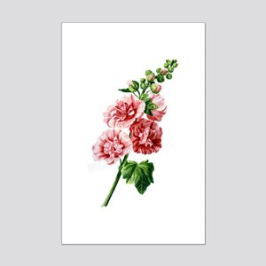 Hollyhocks Drawn From Nature Mini Poster Print