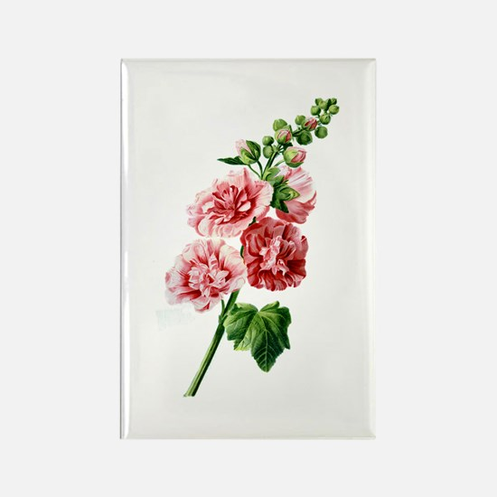 Hollyhocks Drawn From Nature Rectangle Magnet