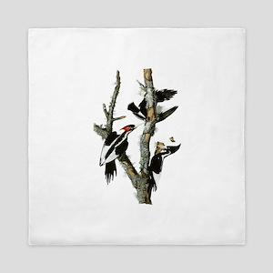 Ivory Billed Woodpeckers Queen Duvet