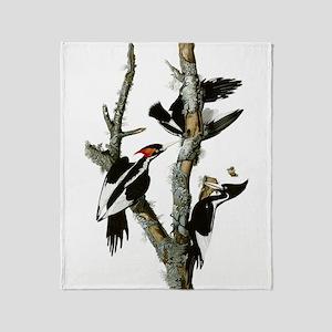Ivory Billed Woodpeckers Throw Blanket