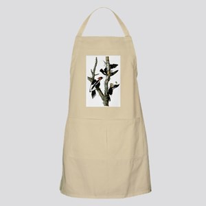 Ivory Billed Woodpeckers Apron