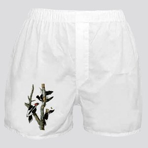 Ivory Billed Woodpeckers Boxer Shorts