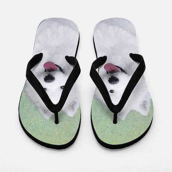 Samoyed Flip Flops