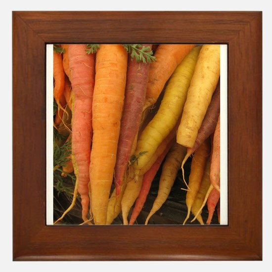 an assortment of long organic carrots in colors Fr