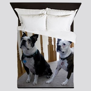 BostonTerrier dogs Queen Duvet