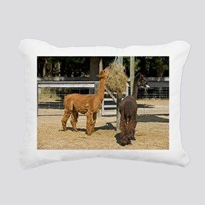 Alpacas - Pillow