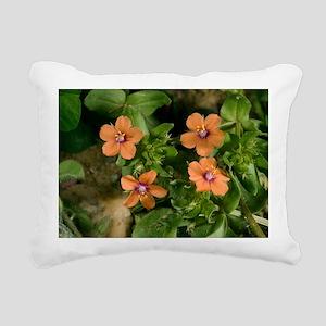 Scarlet pimpernel (Anagallis arvensis) - Pillow