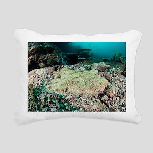 Tassled wobbegong - Pillow