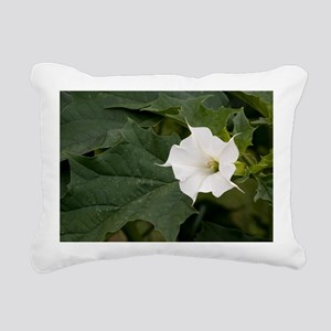 Thorn Apple (Datura stramonium) - Pillow
