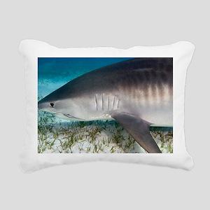 Tiger shark - Pillow