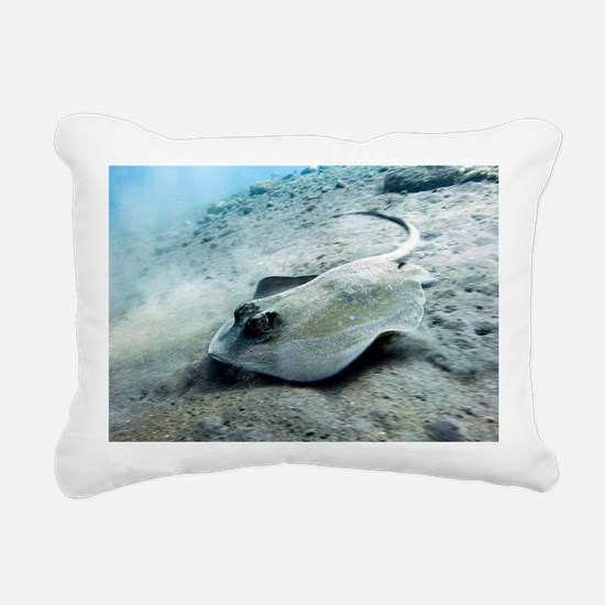 Bluespotted stingray - Pillow