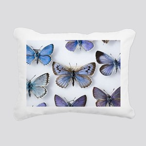 British large Blue butterfly colln. 1865 - Pillow