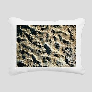 Carnivorous theropod dinosaur footprint - Pillow
