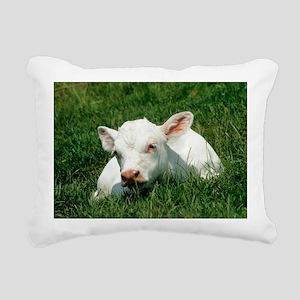 Charolais calf - Pillow