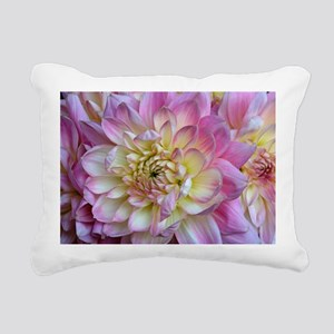 Dahlia x cultorum - Pillow