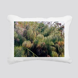 Giant Horsetail (Hippuris sp.) - Pillow