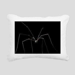 Harvestman - Pillow