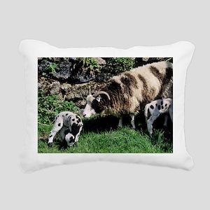 Jacob sheep - Pillow